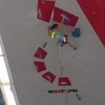 World Cup, Climbing, Video Analysis